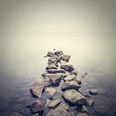 Minimalistyczny mglisty krajobraz. ukraina. — Zdjęcie stockowe