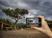 Tourist Holds Up Abstract Camera at mountain landscape — Stock Photo