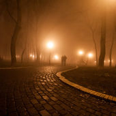 Romantický a štěstí scéna páry mlha večer v parku — Stock fotografie