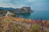 Ochtend zeegezicht met bergen. Oekraïne. Krim — Stockfoto