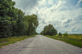 Country highway through the forest — Stock Photo
