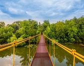 河金属悬浮桥 — 图库照片