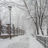 Winter city park in morning — Stock Photo