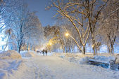 Winter city park — Stock Photo