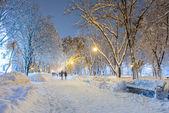 冬天的城市公园 — 图库照片