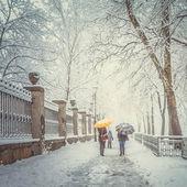 Parc de la ville enneigée et personnes avec parasols — Photo