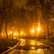 Foggy evening in the park — Stock Photo