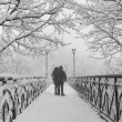 Stock Photo: Winter city park. Lovers Bridge in Kiev. Ukraine.