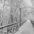 Winter city park. Lovers Bridge in Kiev. Ukraine. — ストック写真