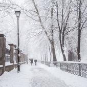 Winter city park in morning — Stockfoto