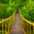 Stock Photo: Metal suspension bridge over river