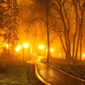 Stadsparken på natten — Stockfoto
