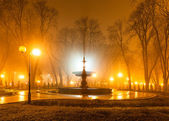 City park at night — Stock Photo