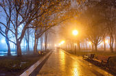 City park at night — Stock Photo
