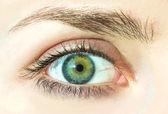 Macro image of human eye — Stock Photo