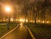 The avenue of city park at night — Stock Photo
