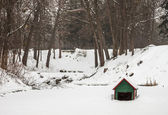 Winter lake with a house for swans — Stock Photo