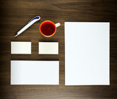 Template for branding identity for graphic designers presentations and portfolios. — Stock Photo