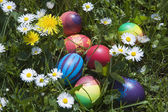Easter eggs in a grass — Stok fotoğraf