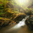 Beautiful waterfall in autumn — ストック写真