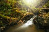 Hermosa cascada en otoño — Foto de Stock