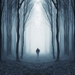 Man walking in a mysterious surreal forest with fog — Stock Photo