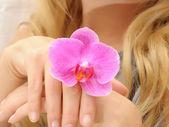 Mani di donne con fiore — Foto Stock