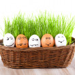 Group of  Funny crazy  smiling  eggs in  basket with grass. sun bath. — Stock Photo