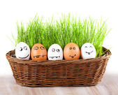 Yumurtalar sepette çim ile gülen komik deli grubu. güneş banyosu. — Stok fotoğraf