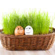 Two Funny smiling  eggs in  basket with grass. sun bath. — Stock Photo
