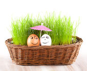 Two Funny smiling eggs under umbrella in basket with grass. sun bath. — Stock Photo