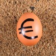 Image of big white egg with euro sign on a sand — Stock Photo #21778813