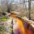 Little stream in the forest at fall time — Stock Photo