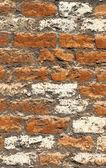 纹理的老损毁白色砖墙 — 图库照片