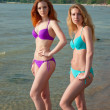Two bikini models posing on a beach. — Stock Photo