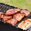 BBQ Ribs and fish on grill with charcoal — Stock Photo #28687805