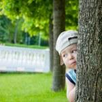 Little boy hiding behind tree — Stock Photo