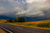 Road and field and dark cloud before rain — Stock Photo