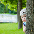 Little boy hiding behind tree — Stock Photo
