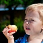 Cute boy eating apple in a garden. — Stock Photo #30864341