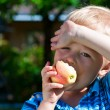 Cute boy eating apple in a garden. — Stock Photo