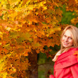Stock Photo: Autumn woman on leafs background
