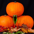 Stock Photo: Trio of pumpkins against black background