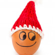 Funny lovely egg in winter santa hat — Stock Photo