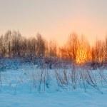 Sunrise amid cold winter landscape — Stock Photo #42309609