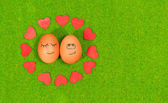 Funny eggs in love on a green grass. — Stock Photo