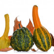 Gourds — Stock Photo #13589611