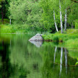 Peaceful lake in summer — Foto Stock