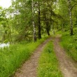 Stock Photo: Rural road by lake