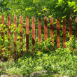 Old red wooden fence in spring — Stock Photo